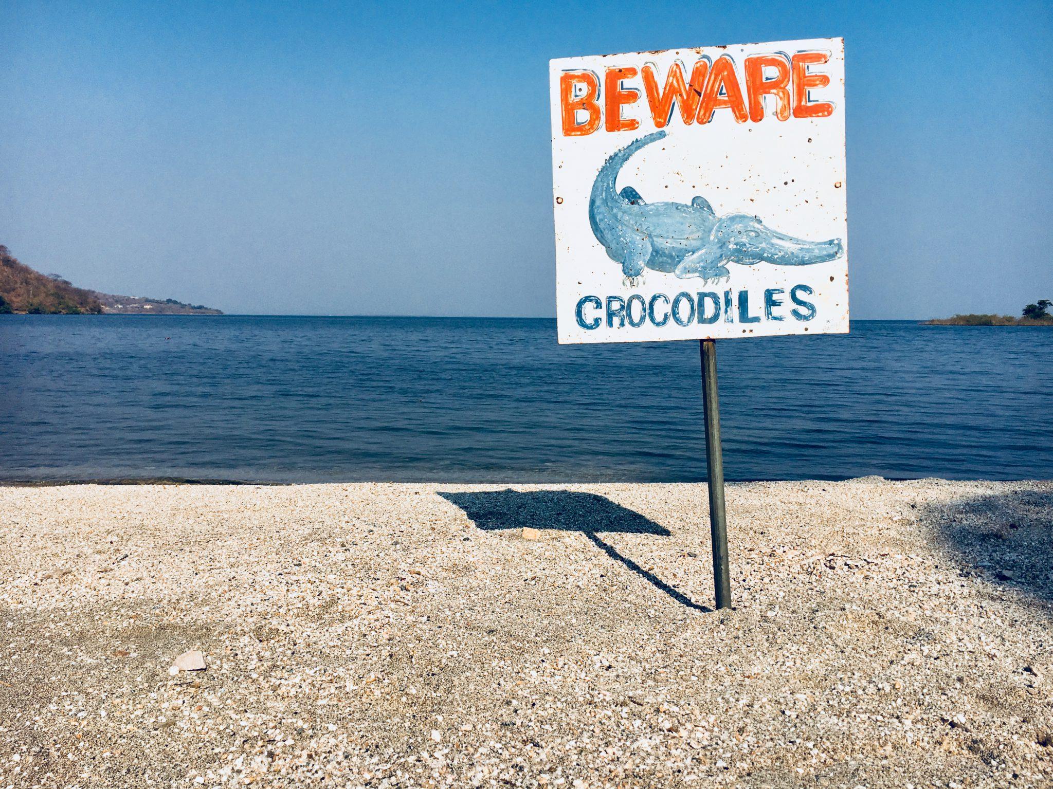Beware! Crocodiles, Lake Kariba, Zambia.